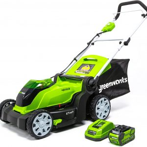 Greenworks G-max 24252 (40v) Review