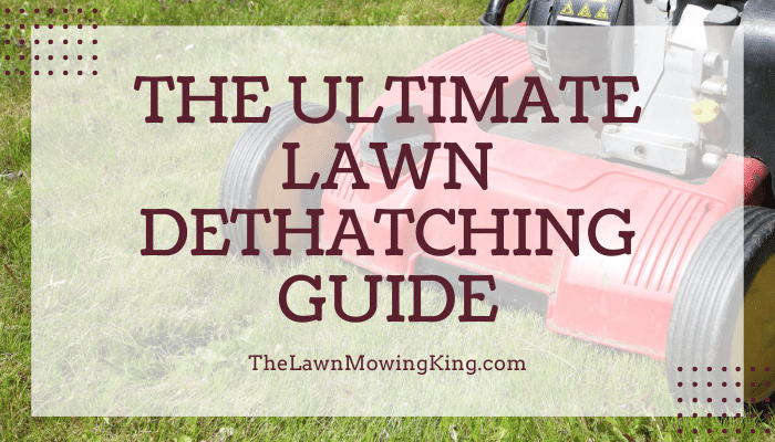 Lawn dethatching guide