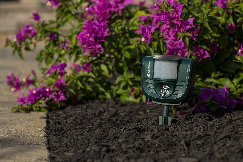 high-frequency cat deterrent device for garden