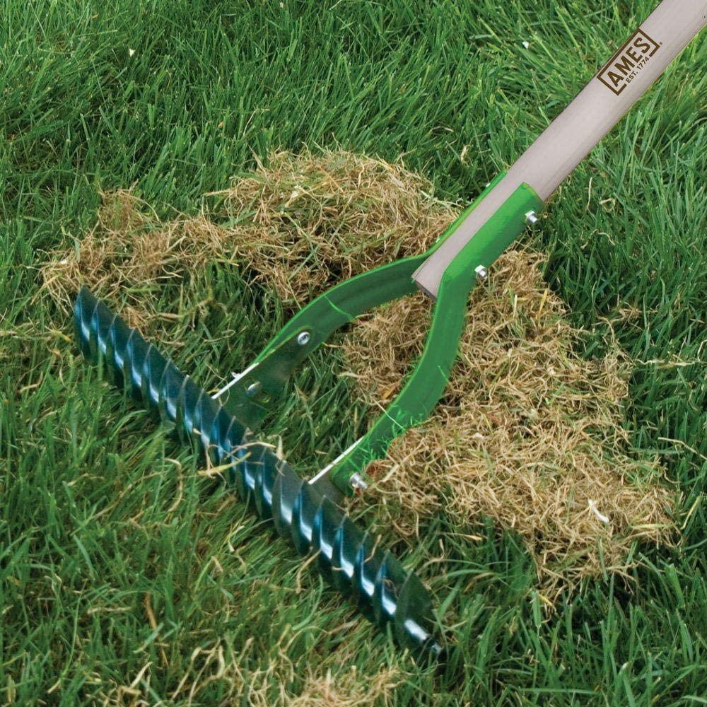 manual dethatching rake