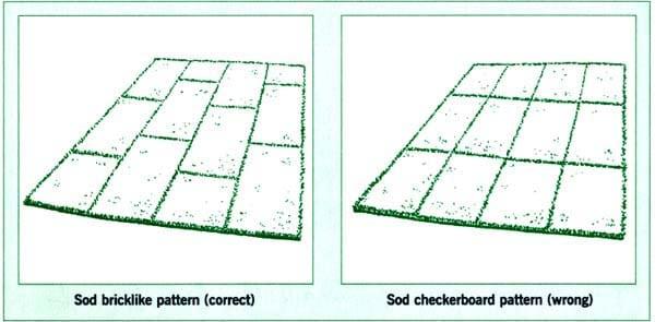 Sod Yard Pattern