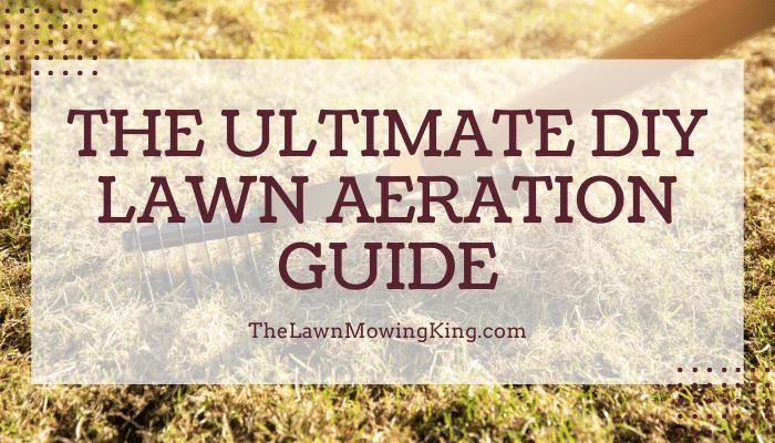 How to Aerate Your Lawn - Lawn Aeration Guide