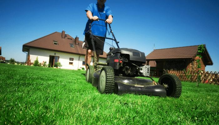 Mowing Lawn in Spring
